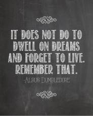6357995177117616381720150678_harry-potter-quotes-dumbledore-dreams-2