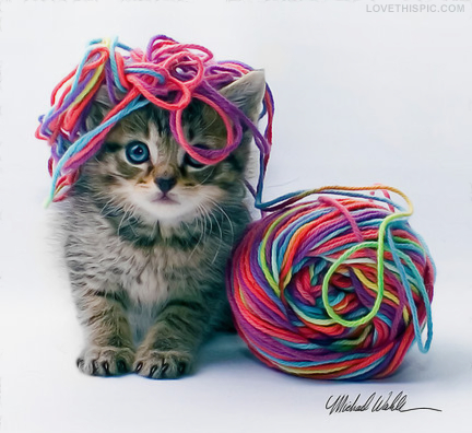 tangled_in_yarn